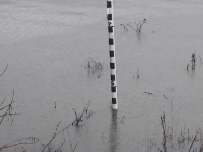 Уровень воды в Оке за последние сутки снизился ещё на 50 см