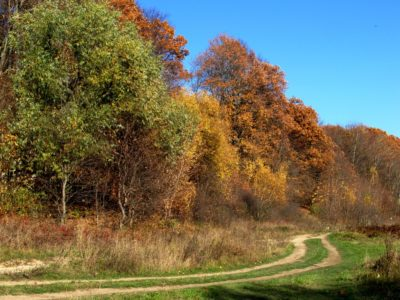 Осенний поход в Нагорную Дубраву