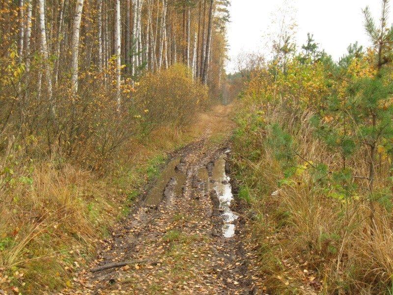 Узкоколейка, история дороги
