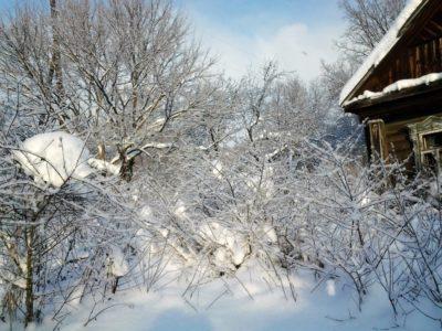 Добрая зима в Комарёве