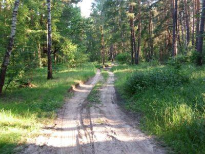 Дорога на Большое Уварово