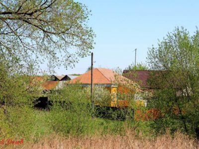 Деревня Марково