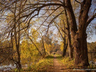 Золотая осень усадьбы  Ф.Э. Келлера в объективе Алексея Анисимова