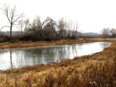 Старичные озёра Оки поздней осенью 2019 года