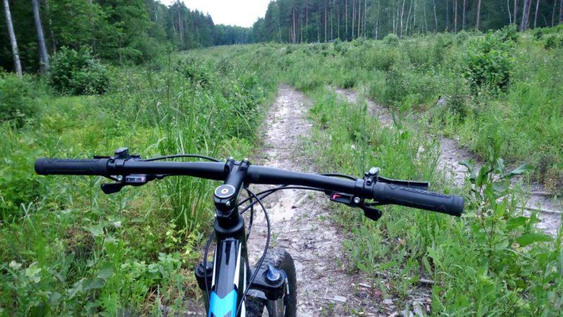 Велопоход по болотам и старинным дорогам