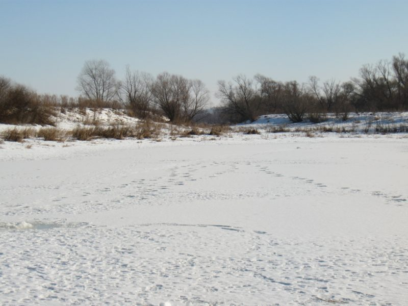 Предотвратить замор на пойменных озёрах