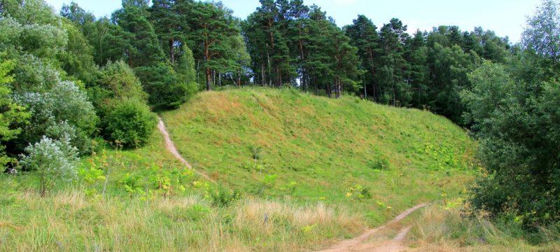На городище Ростиславль вновь работает археологическая экспедиция