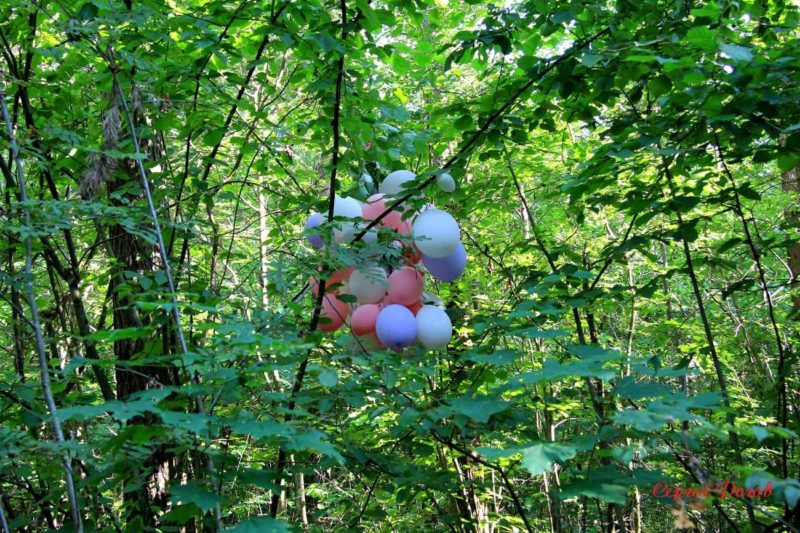 Шары в лесу. Сами губим родную природу