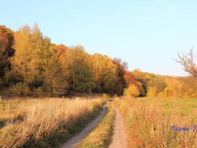 Снова осень закружила карусель мелодий…